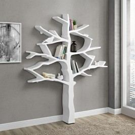 Knowledge Bookcase in White