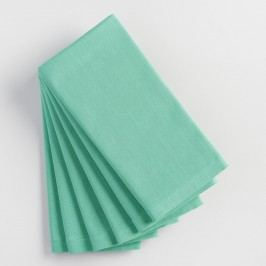 Dusty Aqua Buffet Napkins Set of 6: Blue - Cotton by World Market