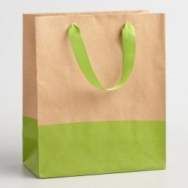 Medium Lime Dipped Kraft Gift Bags Set of 2 by World Market
