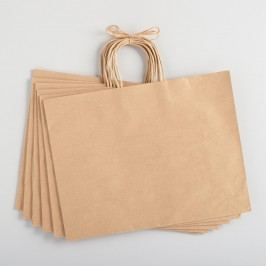 Large Handmade Kraft Gift Bags Set of 6 by World Market
