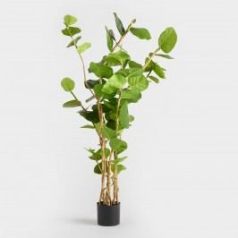 5 Ft Faux Eva Sea Grape Plant: Green by World Market