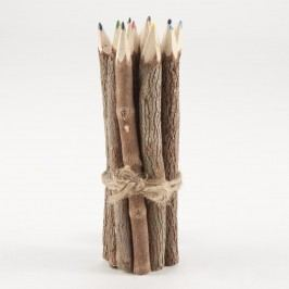 Long Twig Colored Pencils Set Of 12 - Wood by World Market