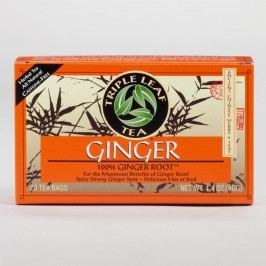 Triple Leaf Ginger Tea, Set of 6 by World Market