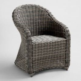 All Weather Wicker Capistrano Outdoor Patio Armchair: Brown - Resin by World Market
