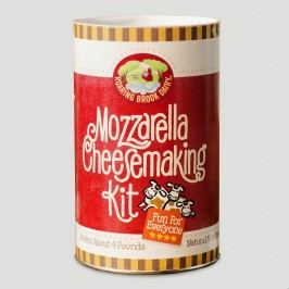 Mozzarella Cheesemaking Kit: Multi by World Market