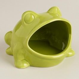 Green Frog Soap Dish - Ceramic by World Market