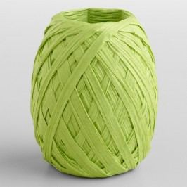 Lime Paper Raffia Eggs, Set of 2 by World Market
