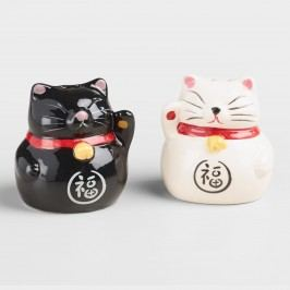 Lucky Cat Salt and Pepper Shaker Set by World Market