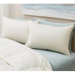 Organic Soft White Down Pillow